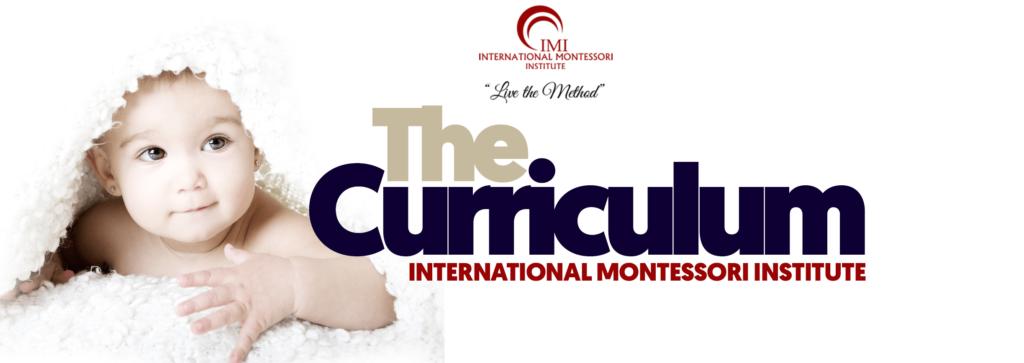 THE CURRICULUM 1