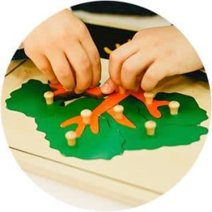 Ciencias Montessori 3-6