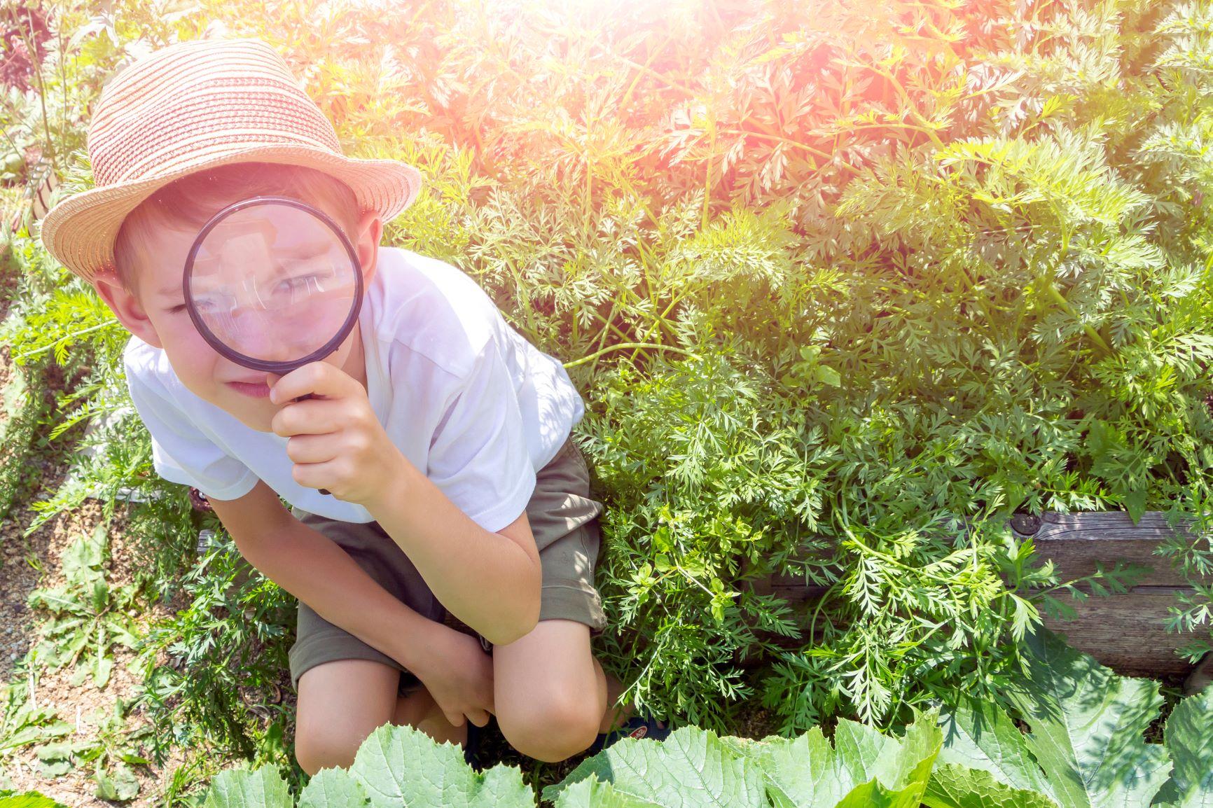 niño imaginativo explorando la naturaleza con una lupa