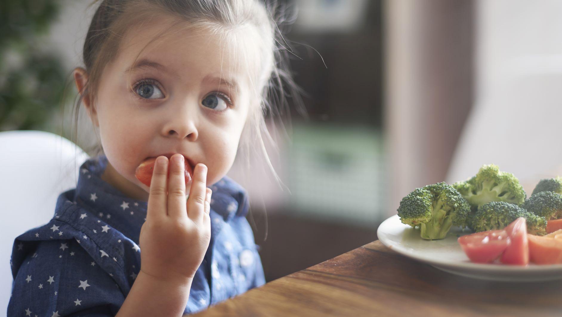 Alimentos influye como aprendemos y memorizamos